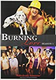 Burning Love: Complete First Season
