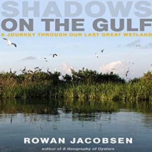 Shadows on the Gulf Audiobook