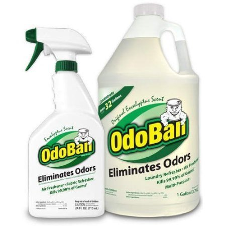 OdoBan Odor Eliminator RTU, 1qt Spray Bottle, W1 Gallon Concentrate, Original Eucalyptus Scent (Smoke Odor Eliminator Spray compare prices)