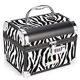 Zebra Beauty Makeup Therapist Artist Cosmetics Case Box with lock #138