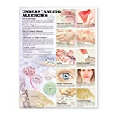 Understanding Allergies 2nd Edition Anatomical Chart
