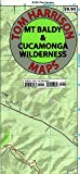 Mt  Baldy, Cucamonga Wilderness, Trail Map: Camping, Mountain Biking, Hiking, Trail Camps: Shaded-Relief Topo Map (Tom Harrison Maps)