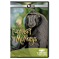 Nature: Funkiest Monkeys