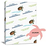 Hammermill Colors Salmon, 20lb, 8.5x11, 500 Sheets/1 Ream Case (103119R)