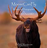 Moose Can Fly!