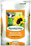 Morning Song Black Oil Sunflower Wild Bird Food, 40-Pound