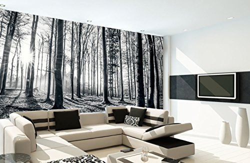 1wall-nature-forest-wall-mural-wood-black-and-white-315-x-232-m