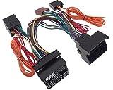 PaRROT-câble adaptateur