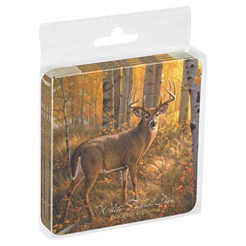 Tree-Free Greetings Set Of 4 Cork-Backed Coasters, 3.75 x 3.75 Inches, White Tailed Deer Themed Wildlife Art (52915)