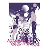 Arakawa Under the Bridge T-shirt White Size: XL