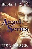 Angel Series (Books 1, 2, & 3) (The Angel Series)