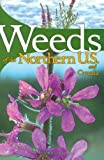img - for Weeds of the Northern U.S. and Canada: A Guide for Identification by France Royer (1999-05-01) book / textbook / text book