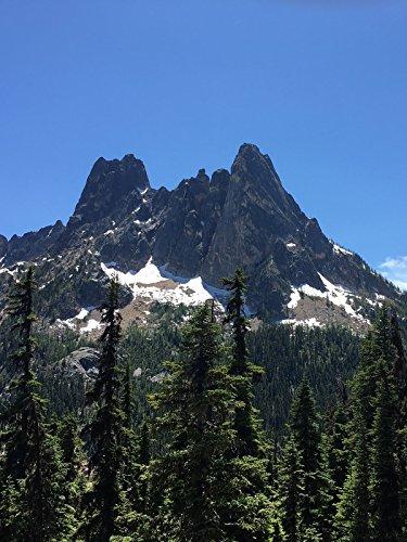 Hiking with Valentine - Washington Pass Overlook Trail, North Cascades National Park