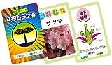 植物のなかまカードゲーム