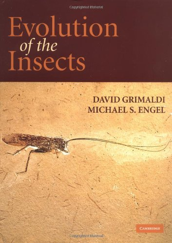 Evolution of the Insects (Cambridge Evolution Series)