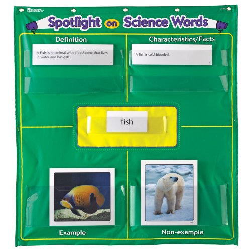 Learning Resources Spotlight On Science Words Pocket Chart (Frayer Model compare prices)
