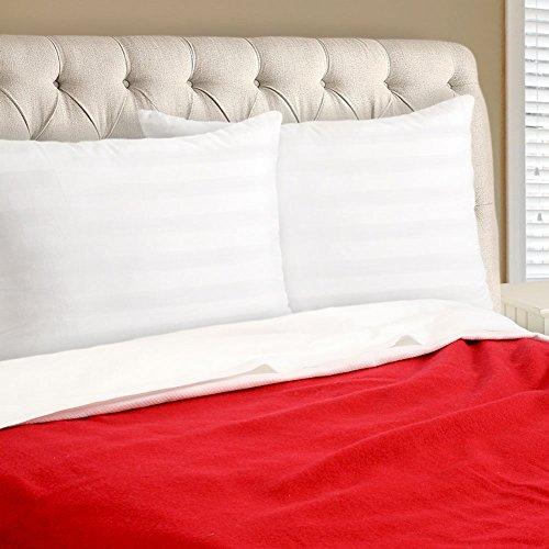 pegasus-home-fashions-ez-dreams-natural-latex-plus-pillow-2-pack-standard-white
