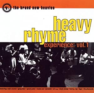 Heavy Rhyme Experience Vol. 1
