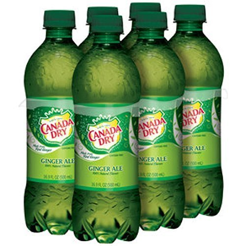 canada-dry-ginger-ale-169-oz-bottle-pack-of-24-by-unknown