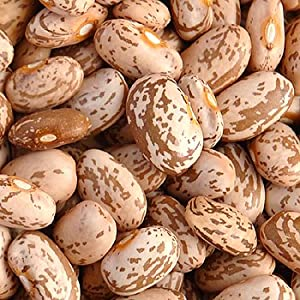 Organic Dried Beans