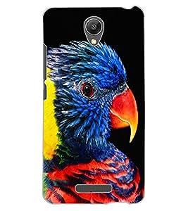 ColourCraft Beautiful Parrot Design Back Case Cover for XIAOMI REDMI NOTE 2 PRIME