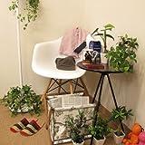 光触媒 アートフラワー パキラ 観葉植物 インテリア グリーン 造花