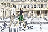 DVD&CD付き限定版『のだめカンタービレ』第24巻