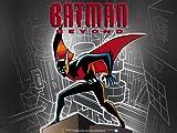 51XwLJlfG3L. SL160  Inside Batman Beyond Season 3