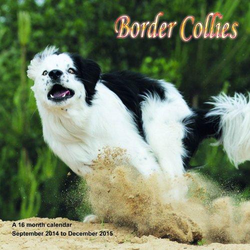 51XwRMnQDhL 2015 Dog Calendars