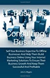 img - for E-Business Consulting Business: Sell Your Business Expertise To Offline Businesses And Help Them Build Business Online Using Your Internet Marketing ... And Keep Them Successful And Profitable book / textbook / text book