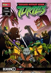 Teenage Mutant Ninja Turtles: Season 2, Part 2