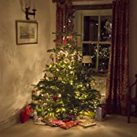 LightsEtc 100 LED 39-Feet Solar Christmas Lights (Warm White)