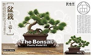 1/12 ザ・盆栽 壱 プラモデル BON-01