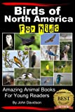 Birds of North America For Kids - Amazing Animal Books  for Young Readers (Amazing Animal Books for Young Readers)