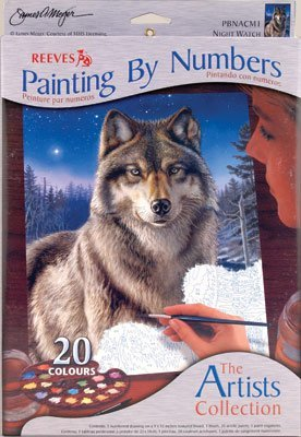 Artists Collection Medium Paint By Numbers Night Watch