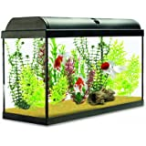 Interpet Aquaverse Glass Aquarium, 65 Litre