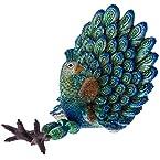 Peacock Sitter
