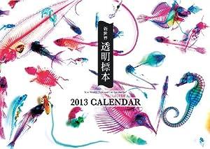 新世界透明標本カレンダー 2013 ([カレンダー])