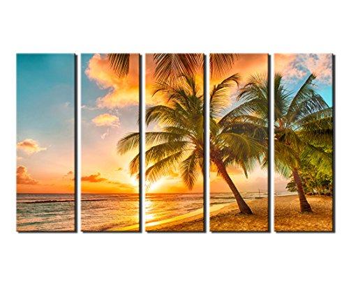 51XxtLanQvL The Best Palm Tree Artwork You Can Buy