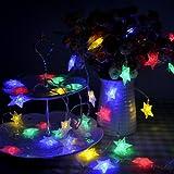 Lychee 4m 13ft 40 LED impermeabile Batteria particelle stella a cinque punte Operated luci leggiadramente della stringa per Outdoor Wedding dell'interno Garden Home decorazione della festa di Natale (Multicolore)