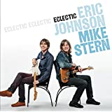 Eclectic ~ Mike Stern