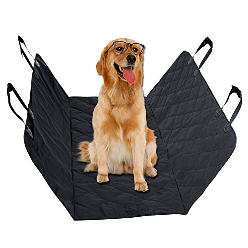 vitalismo best dog beds for extra large dogs reviews