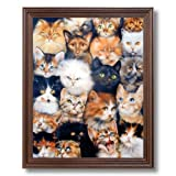 Cat Kittens Kitty Collage Kids Room Wall Picture Cherry Framed Art Print