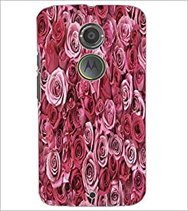 PrintDhaba Roses D-5514 Back Case Cover for MOTOROLA MOTO X2 (Multi-Coloured)