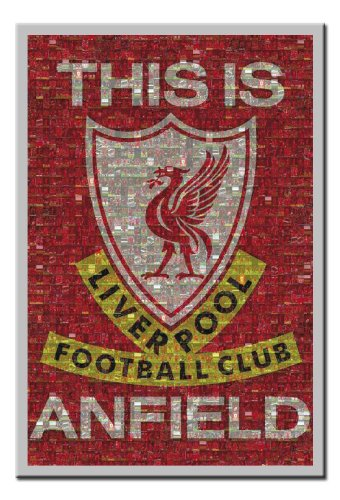 Silver Framed Liverpool FC Mosaic Poster – Approx 39 x 27 Inches (98 x 68 cms)