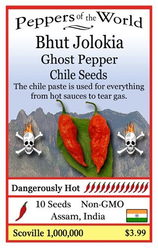 Chile Pepper: Bhut Jolokia Chile Pepper - Hottest Chile Pepper in the World
