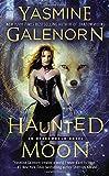 Haunted Moon (An Otherworld Novel) (0515152811) by Galenorn, Yasmine