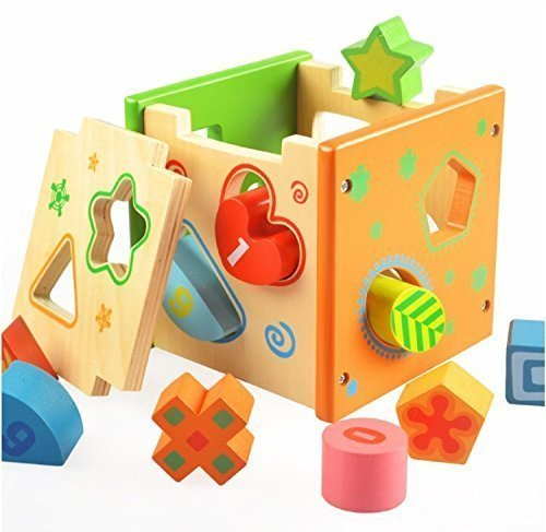 Vidatoy-10-Hole-Cube-for-Shape-Sorter-and-Maths-Learning-Wooden-Toys