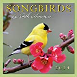 Songbirds of North America 2014 Calendar