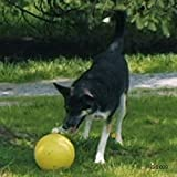 Stabiles Hundespielzeug Running Ei Rugby Ball Form Play Fun Chase